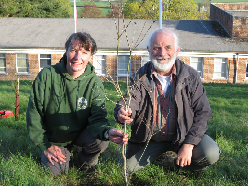 60,000th Tree For Moor Trees